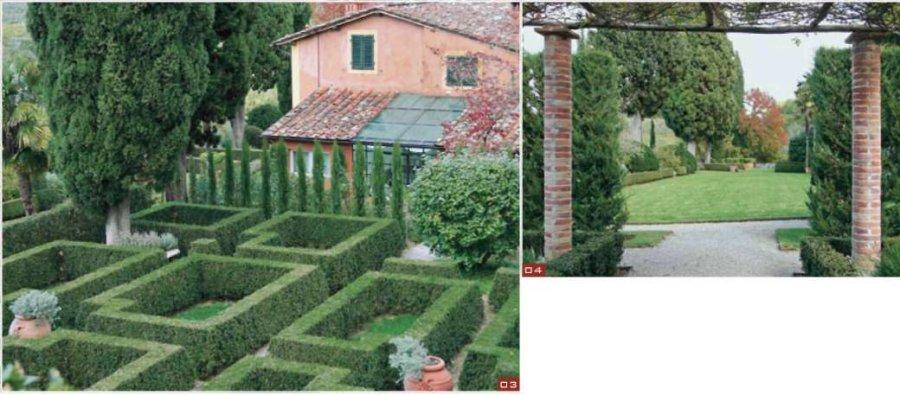 Этот геометрический рисунок хорошо читается с верхней террасы ::  Увитая розами пергола выводит нас на широкую зеленую лужайку