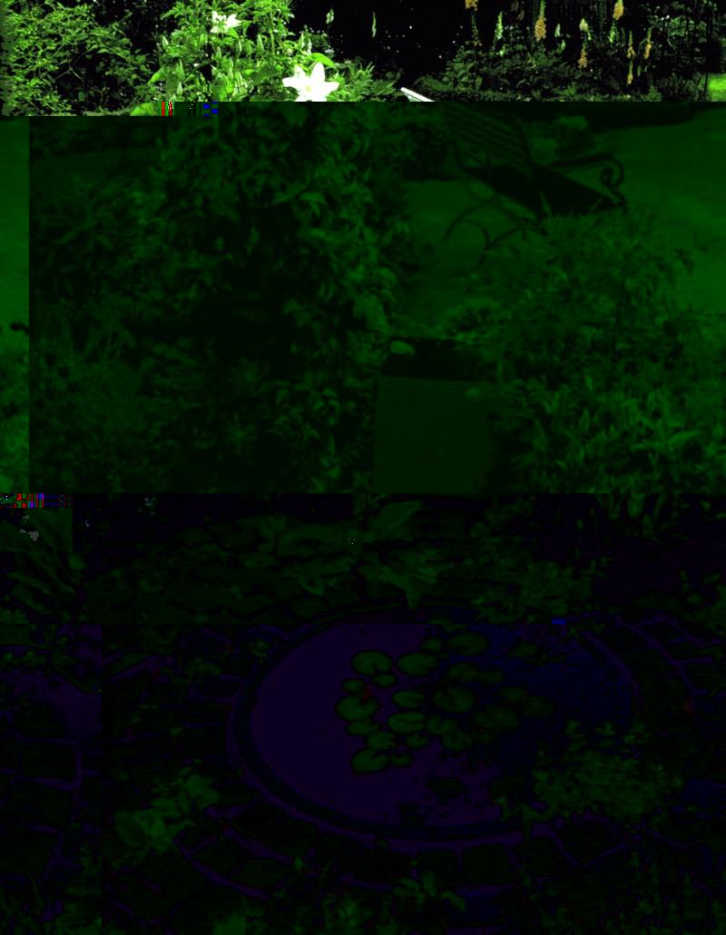 Японский сад пейзаж в миниатюре